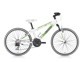 Legnano L660/ SKULL 24″ STEEL 18V WHITE/GREEN