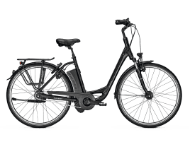 Raleigh Dover Impulse 8 HS 603 Wh