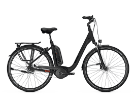 Raleigh KINGSTON XXL 55 cm | Freilauf