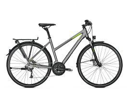 Raleigh RUSHHOUR 3.0 DISC Trapez | 55 cm