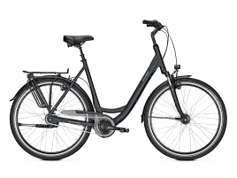 Raleigh CHESTER 8 XXL Wave | 60 cm