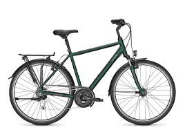 Raleigh Chester 27 Diamant | L | kombugreen matt