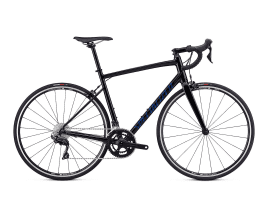 Specialized Allez Elite 58 cm | gloss tarmac black/chameleon/clean